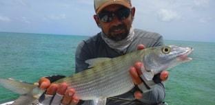 Bahamas passa a exigir certificado contra febre amarela