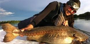Mariana Braga agora faz parte do cardume Fish TV