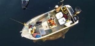 Tubarão de 4 m é fisgado na Noruega