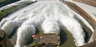 Estudo aponta risco à biodiversidade causado por construção de usinas hidrelétricas