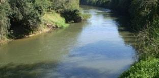Repovoação de alevinos e fim da pesca predatória