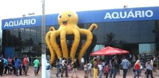 Campanha Aquário Solidário ocorre em Guarujá