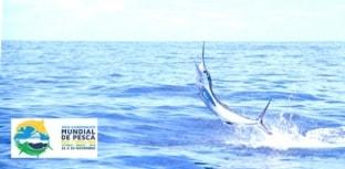Mundial de Pesca Oceânica em Vitória no Espírito Santo