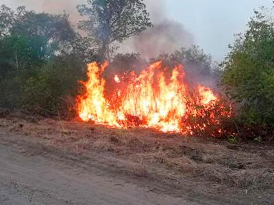 Pantanal em chamas preocupa autoridades e setor turístico