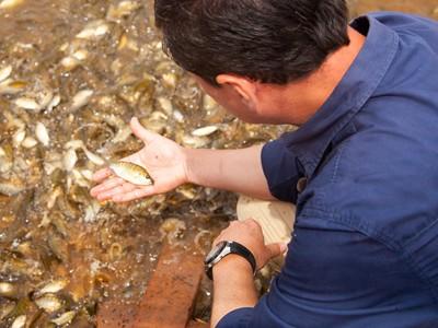 Curso de Controle de Qualidade do Pescado ocorre em março