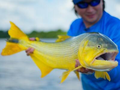 Turismo de pesca recebe novidades no Rio Grande do Sul