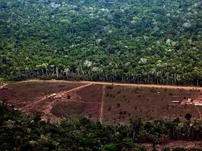 Foto: Divulgação/Greenpeace/Marizilda Cruppe/EVE