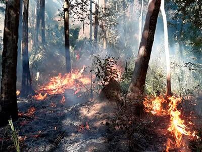 Pantanal segue em chamas