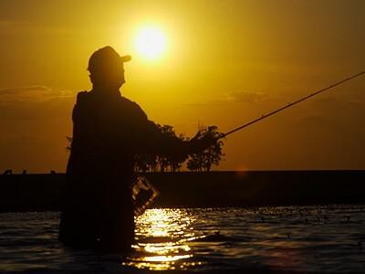 Para pescar no verão: confira 7 espécies que se destacam nesta época do ano