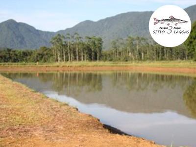 Campeonato Brasileiro em Pesqueiros, Santa Catarina