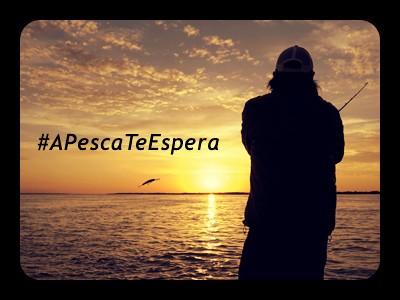 A pescaria que você tanto ama, está te esperando - #apescateespera