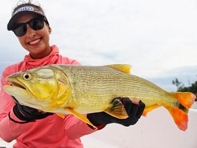 Rosario: uma cidade argentina cheia de turismo e pesca esportiva