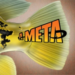 Foto de Meta #4 - Tucunaré tirórus de 5kg
