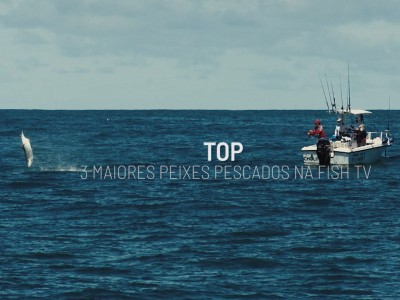 top, peixes grandes, fish tv, pescaria