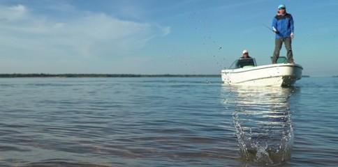 pescaria, exclusividade, fish tv, pesca