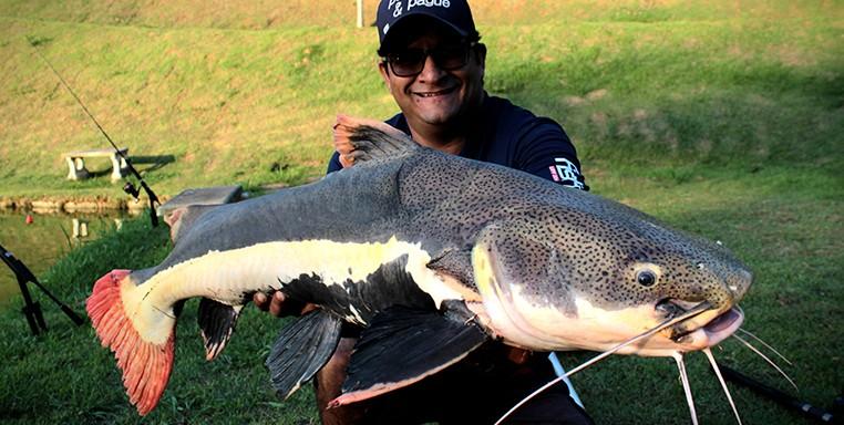 PIRARARA, PESQUERO, FISH TV, DENIS
